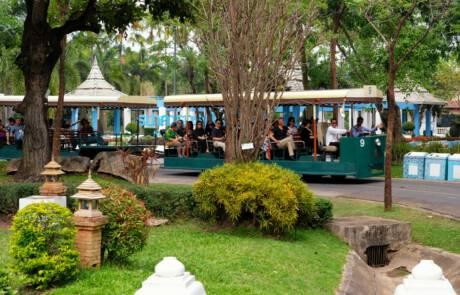 Chiang Mai trips and tours