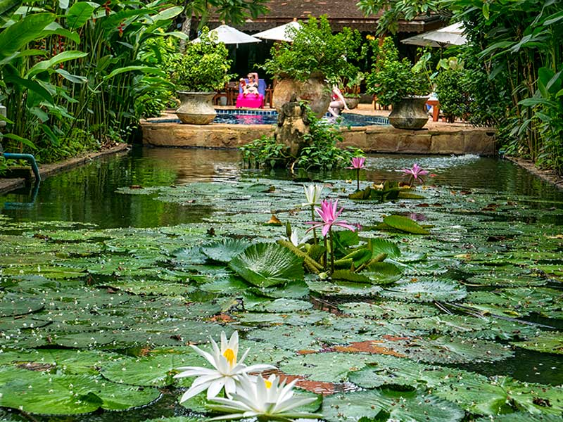 spa resort chiang mai - Ban Sabai Village Resort